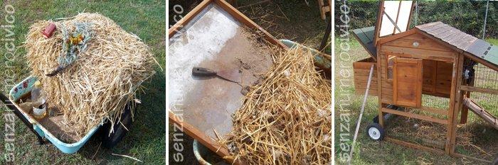 pulizie nel pollaio di legno