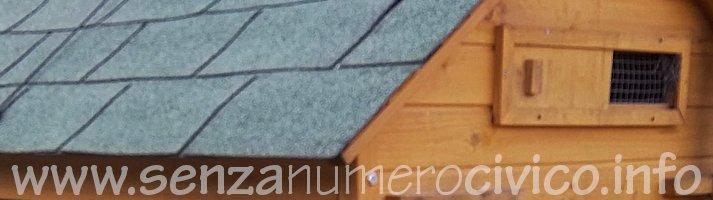 pollaio con tetto di tegole canadesi