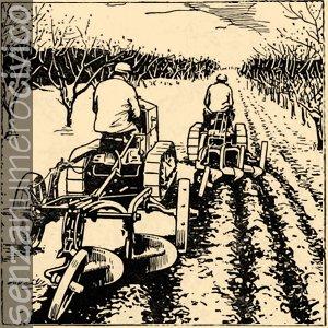 illustrazione trattori che lavorano la terra