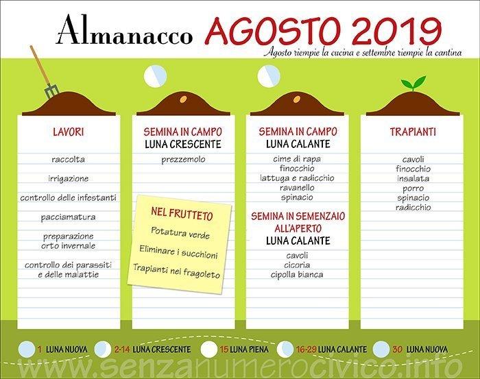 schede lavori, semine e trapianti di agosto