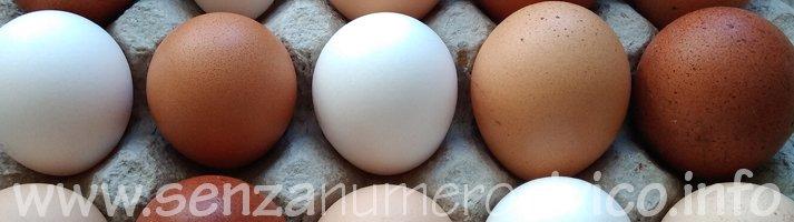 uova di diverse razze di galline