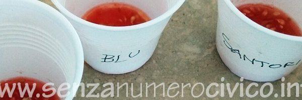 semi di pomodori varietà antiche