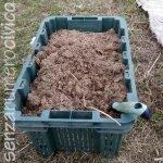 letame di cavallo per concimare l'orto