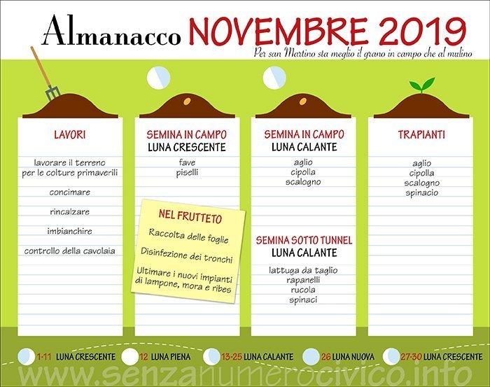 novembre: scheda dei lavori nell'orto