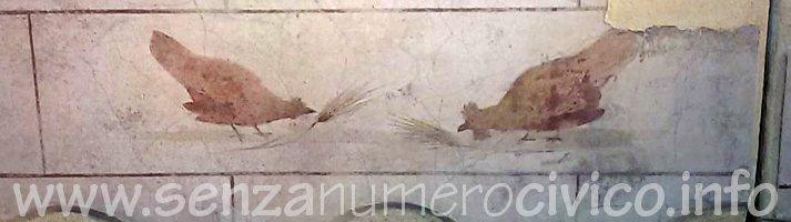 affresco etrusco: galline che beccano