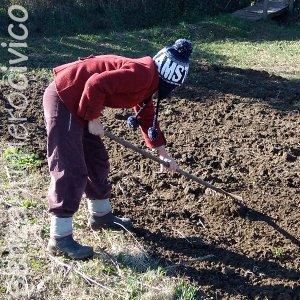 rastrellare prima della semina