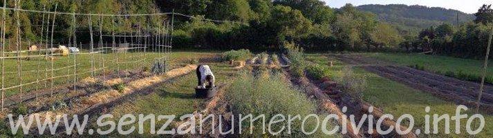 Il nostro orto naturale