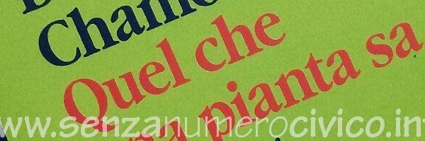 Paricolare della copertina del libro