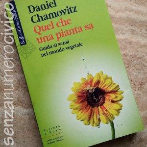 Quel che una pianta sa, copertina del libro
