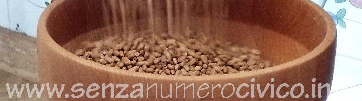 grano nel mulino domestico