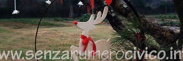 decorazioni di Natale nell'orto