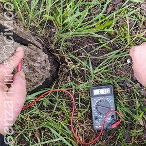 misurazione elettricità da un albero morto