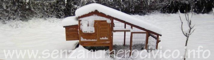 pollaio sotto la neve